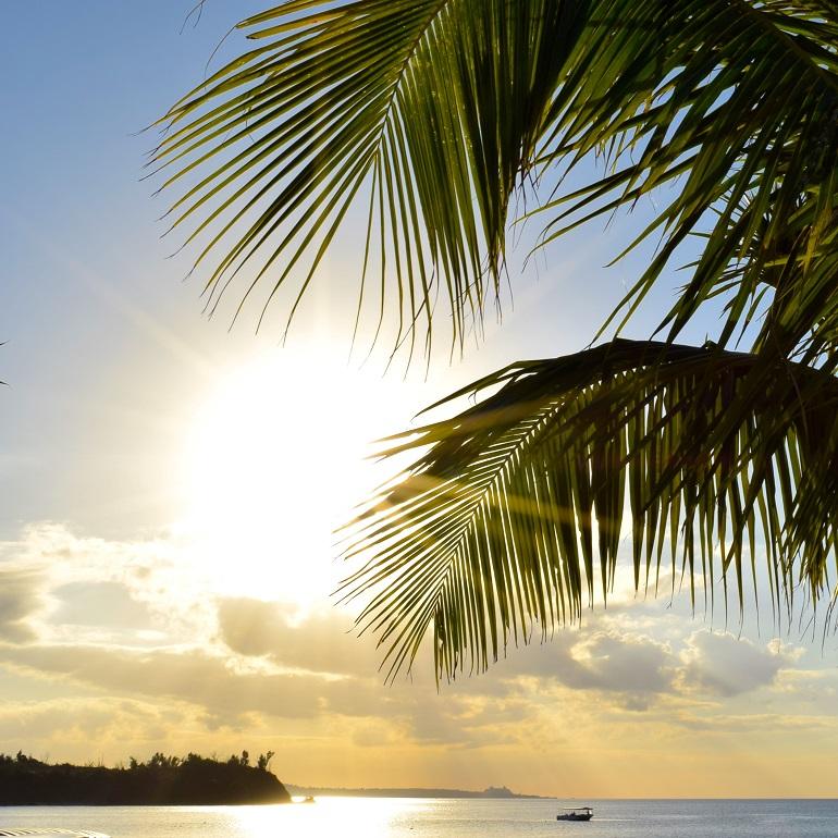 ハワイ写真1枚目