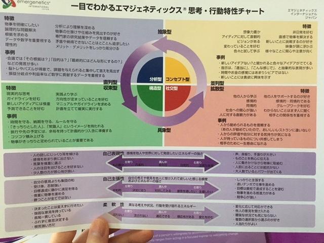 一目でわかるエマジェネティックス 思考・行動特性チャート