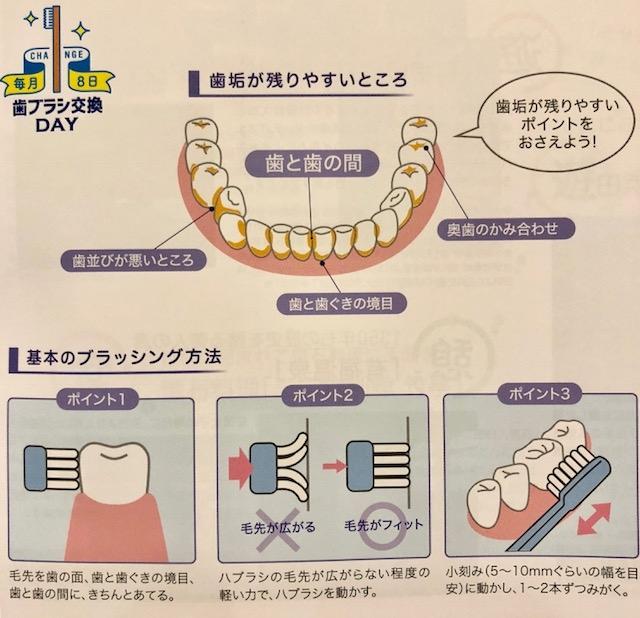 歯ブラシ交換 口腔メンテナンス 芦屋川聖栄歯科医院・矯正歯科